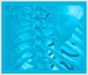 Problemas huesos acupuntura